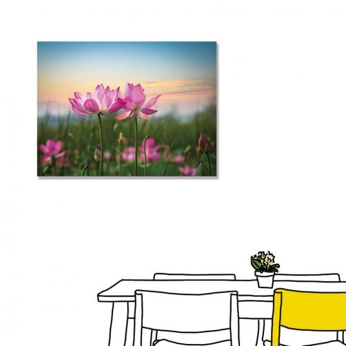 【24mama 掛畫】單聯式 橫幅 粉色 夏季 夏天 粉紅色 花卉 蓮花 荷花 花朵 浪漫  無框畫 40x30cm(風吹荷塘)