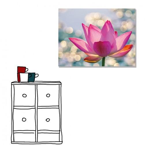【24mama 掛畫】單聯式 橫幅 粉色 夏季 夏天 粉紅色 花卉 蓮花 荷花 花朵 浪漫  無框畫 40x30cm(夏日花季)