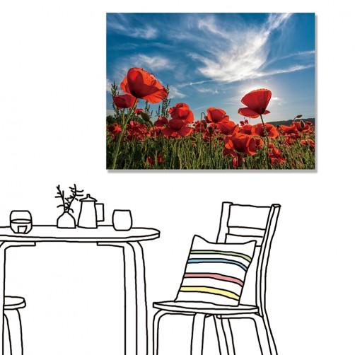 【24mama 掛畫】單聯式 橫幅 紅色 花朵 花卉 虞美人 天空 雲朵 草原 風景 浪漫  無框畫 40x30cm(婀娜)