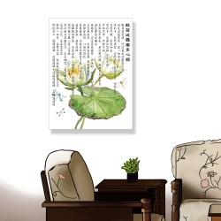 24mama掛畫 單聯式 美麗植物花卉 蓮花 開花 藝術繪畫 昆蟲 蜻蜓 荷葉 無框畫 30x40cm-般若波羅密多心經