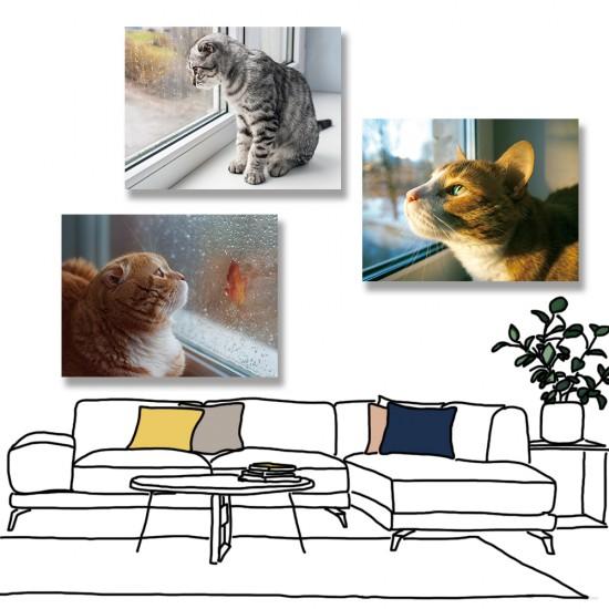 24mama掛畫 三聯式 動物 貓咪 灰貓 橘貓 秋天 楓葉 可愛 無框畫 40x30cm-貓咪