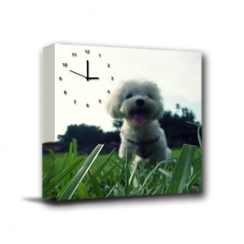 單聯式 方形 寵物 客製化 紀念品 長輩禮 紀念日 家居裝飾 辦公室 民宿 送禮 無框畫 掛鐘-天使-30x30cm