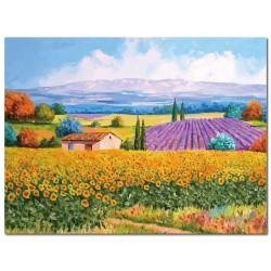 單聯式 橫幅 無框畫 掛鐘 壁鐘 油畫布 鑽石布掛畫 壁畫 家飾品 景物-鄉村景色40x30cm