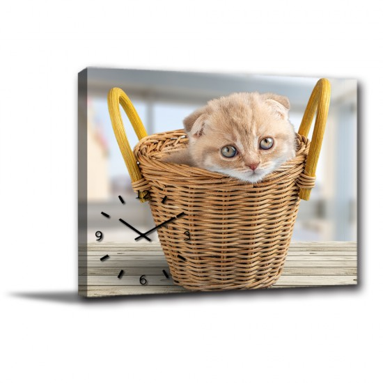 單聯式 橫幅 動物 貓咪 童趣 小孩房 書房 圖書館 咖啡廳 家居裝飾 辦公室 無框畫 民宿 -快樂小貓40x30cm