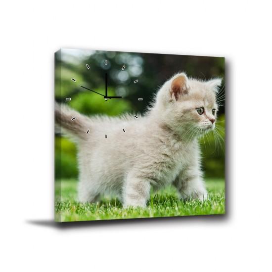單聯式 橫幅 動物 貓咪 童趣 小孩房 書房 圖書館 咖啡廳 家居裝飾 辦公室 無框畫 民宿 -草原上的寧靜40x30cm