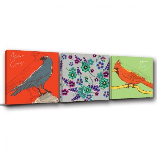 三聯式 方型  動物 鳥 烏鴉 鸚鵡 花卉 喜氣 無框畫 室內擺設 掛畫 覆膜防潑水 -烏鴉與鸚鵡-30x30cm